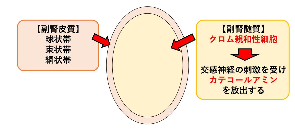 f:id:otahukutan:20200222190747p:plain