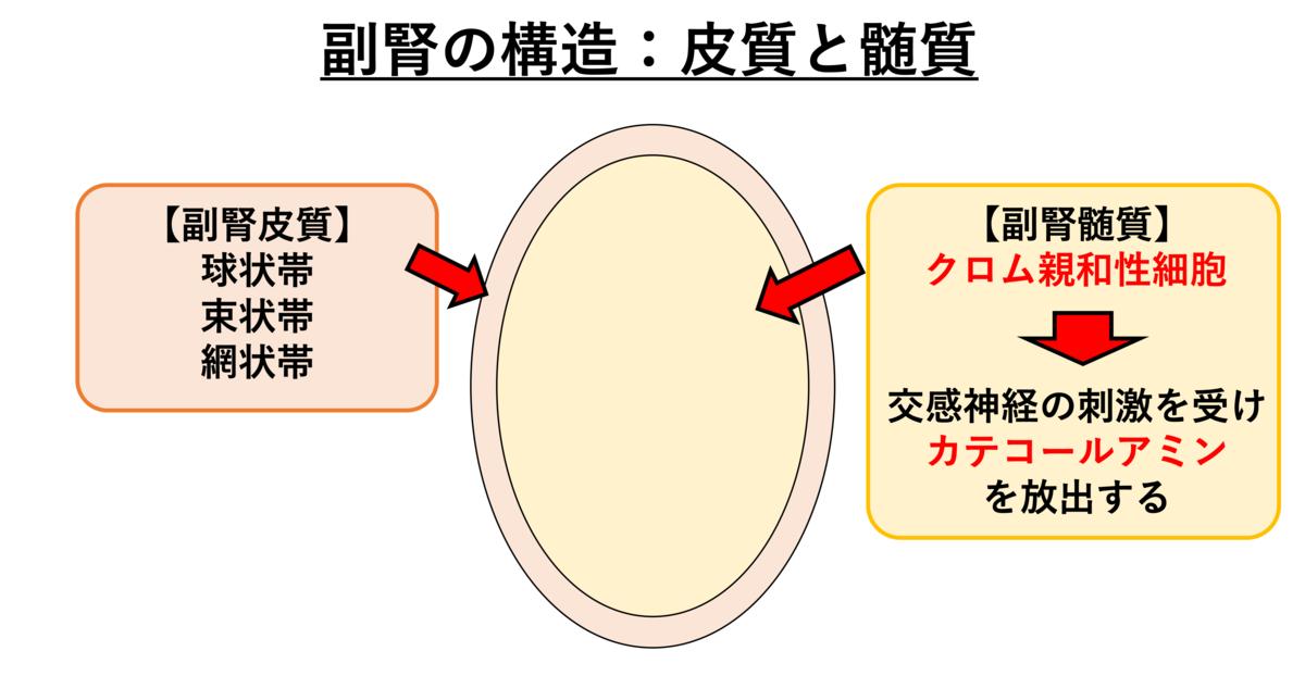 f:id:otahukutan:20200222190805p:plain