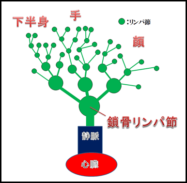 f:id:otama-0201:20170209214222p:plain