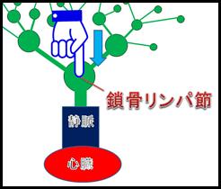 f:id:otama-0201:20170210220941p:plain