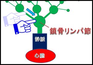 f:id:otama-0201:20170210221106p:plain