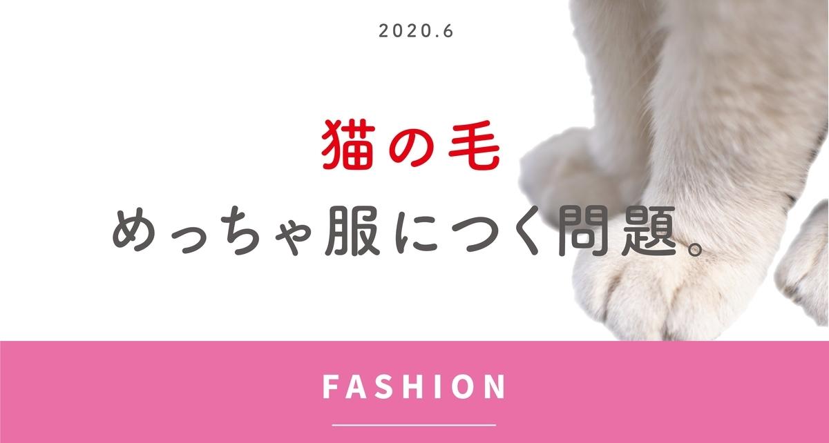 f:id:otama_log:20200605152336j:plain