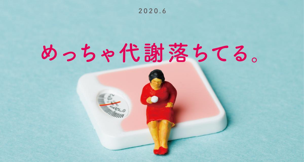 f:id:otama_log:20200606175356p:plain