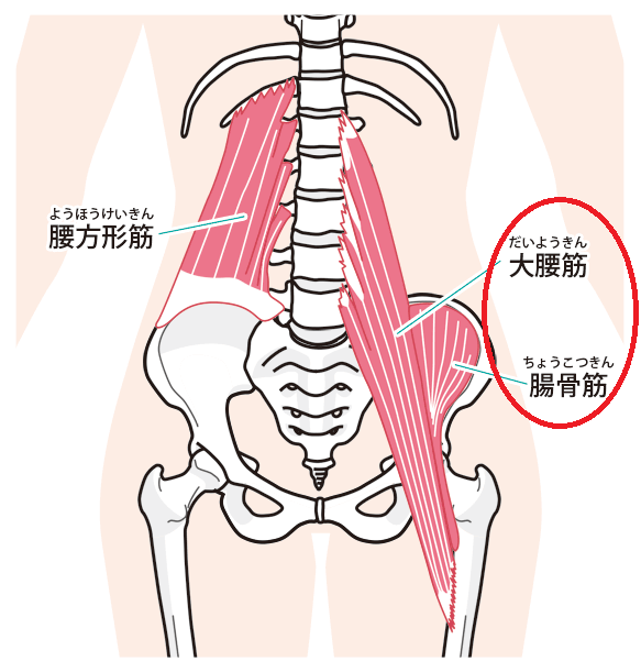 デスクワーク 腰痛 原因