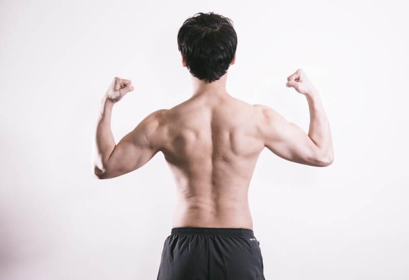 野球 鍛える 筋肉