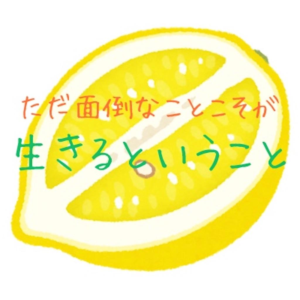 f:id:otami_san:20210214171809j:image