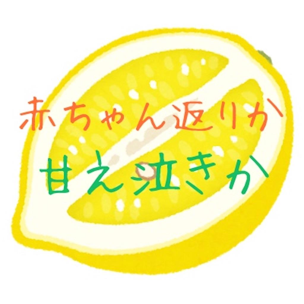f:id:otami_san:20210218090710j:image