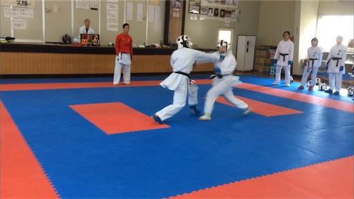 f:id:otani-karate:20190317135336j:image