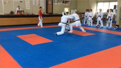 f:id:otani-karate:20190317135339j:image