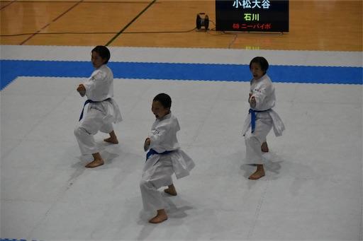 f:id:otani-karate:20191118203318j:image