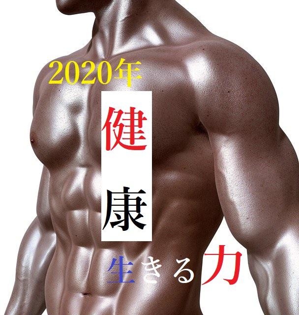 ボディビルダーの鍛えられた肉体