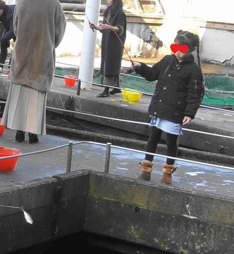 城崎マリンワール アジ釣りのコツ02