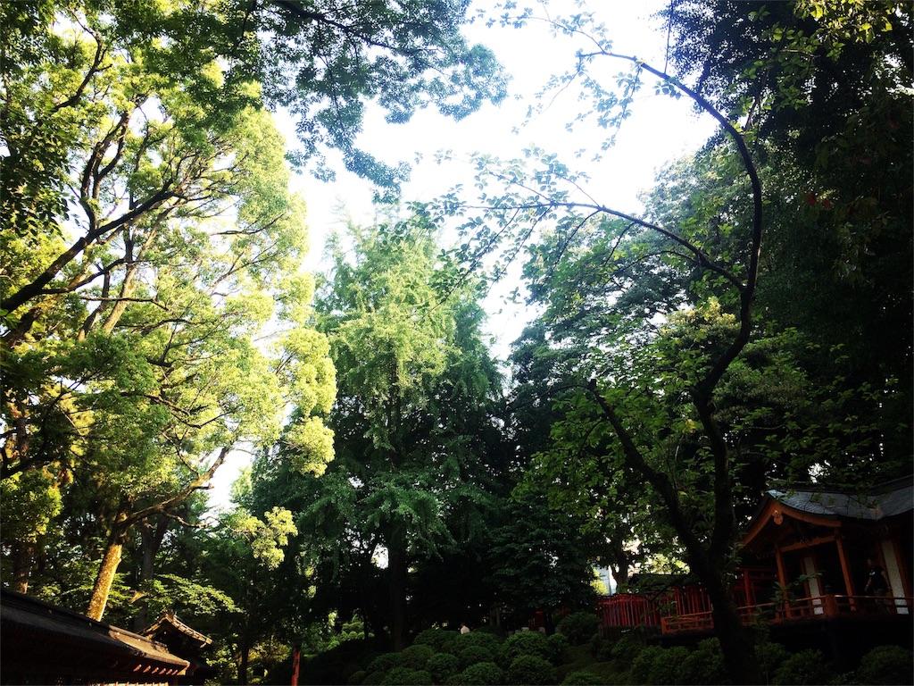 f:id:otohana:20170628192616j:image