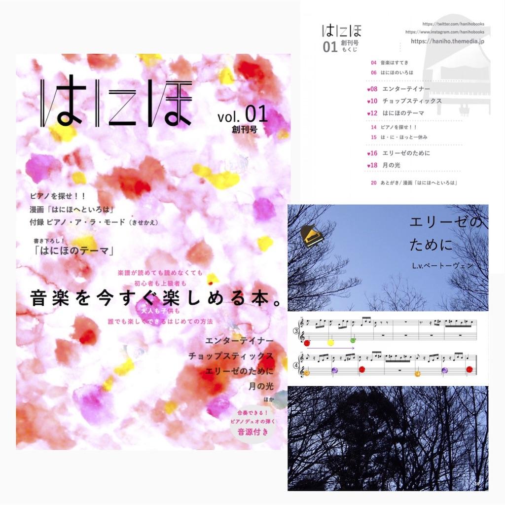 f:id:otohana:20180615231143j:image