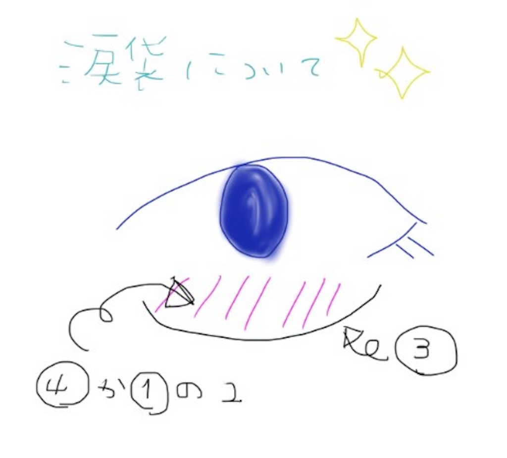 f:id:otohatotsuka:20181201215541j:image
