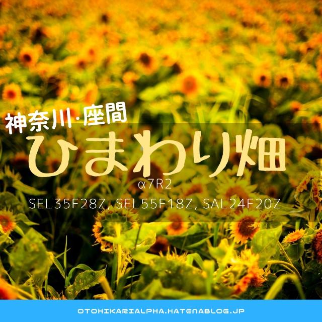 f:id:otohikarialpha:20180830100307j:image