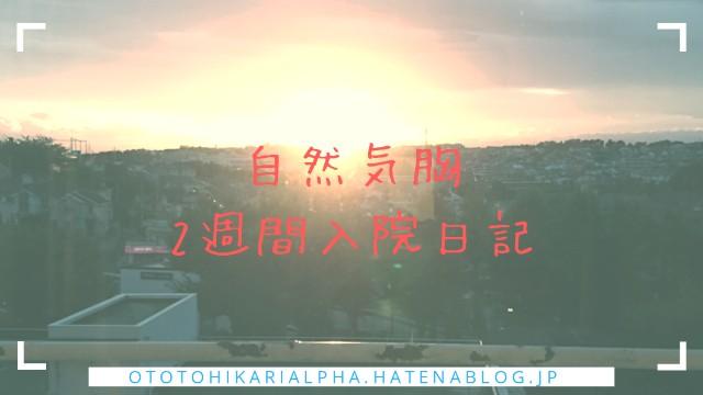 f:id:otohikarialpha:20190224042800j:image