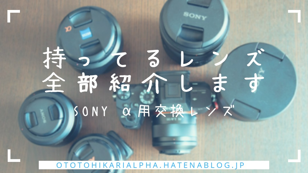 f:id:otohikarialpha:20190317124447j:image