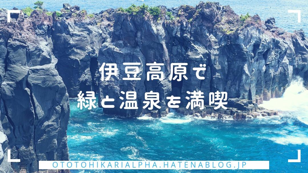 f:id:otohikarialpha:20190317234407j:image
