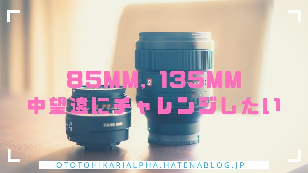 f:id:otohikarialpha:20190317234445j:image