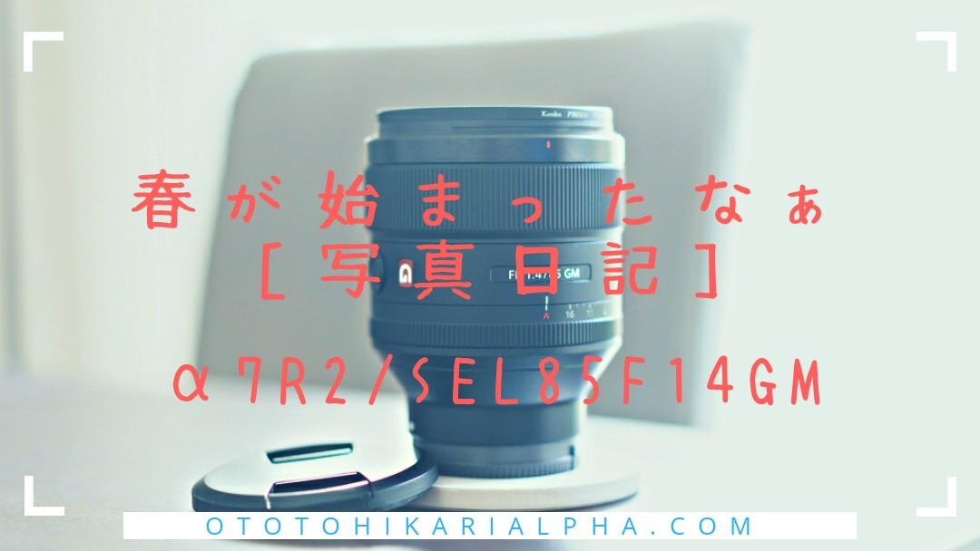 f:id:otohikarialpha:20190325090225j:image