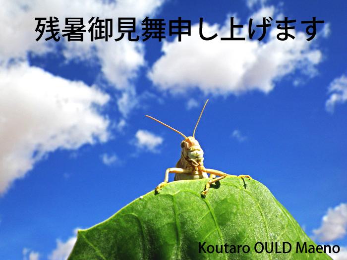f:id:otokomaeno:20110823162545j:image