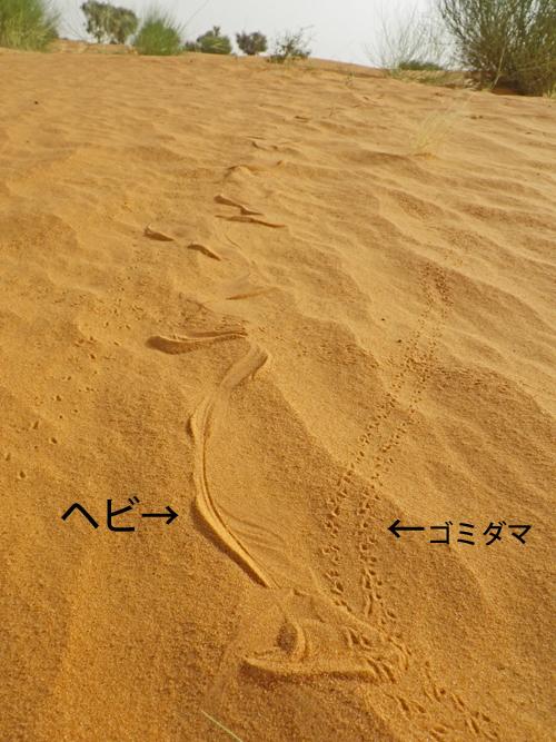 f:id:otokomaeno:20111014085500j:image