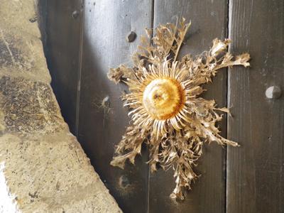 f:id:otokomaeno:20120428145922j:image