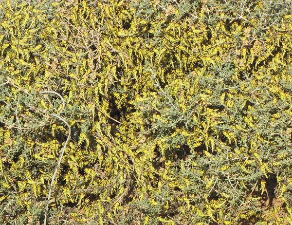 f:id:otokomaeno:20120626162213j:image
