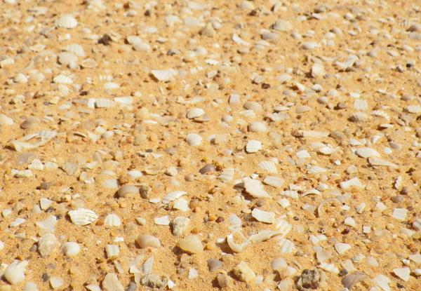 f:id:otokomaeno:20121026124739j:image