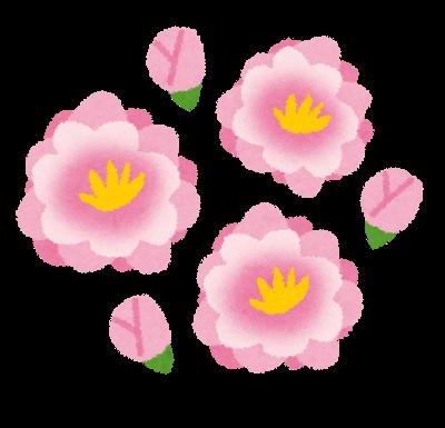 f:id:otokonohoiku:20190216131144p:plain