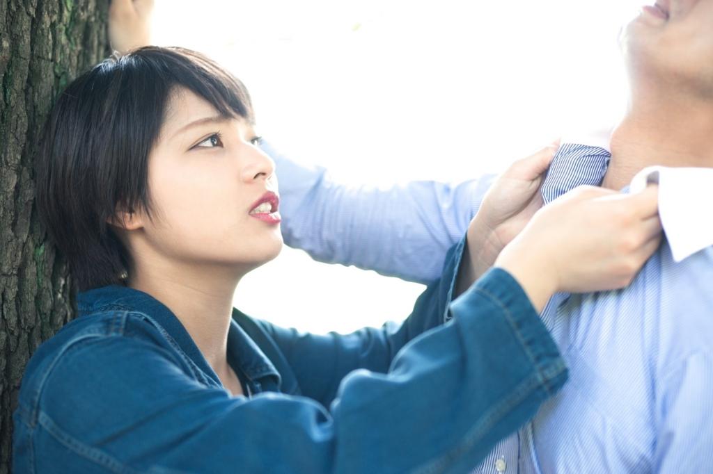f:id:otokonokokoro:20161121202350j:plain