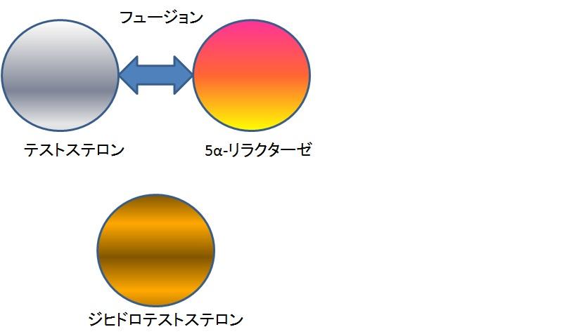 f:id:otokonokokoro:20170119142617j:plain