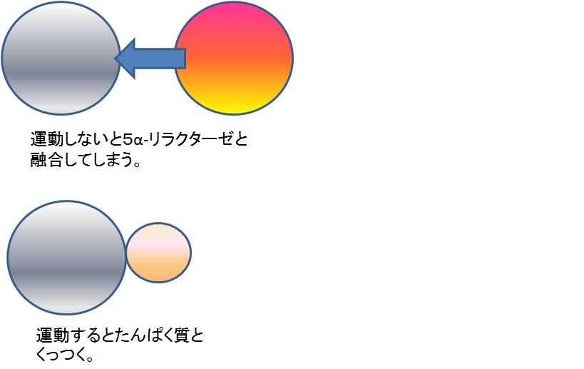 f:id:otokonokokoro:20170119142716j:plain