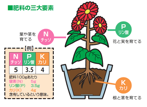 f:id:otoku-otaku:20210404122237p:plain