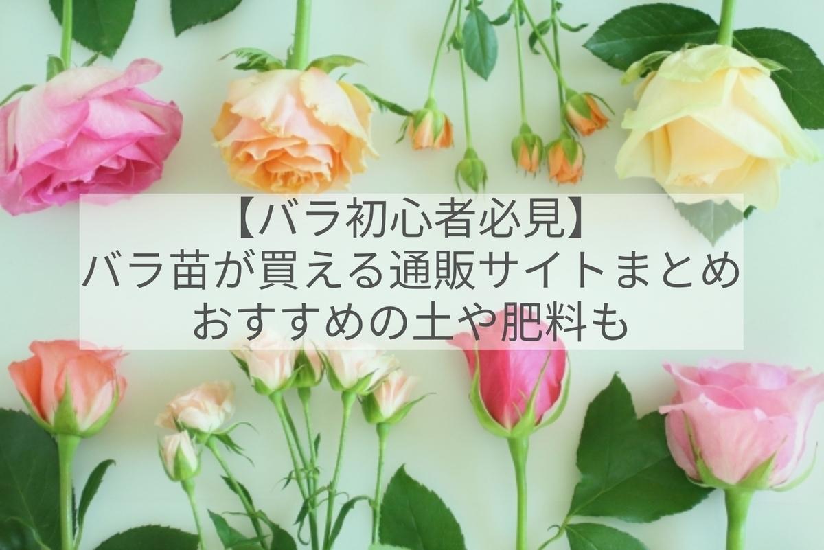 f:id:otoku-otaku:20210519182049j:plain