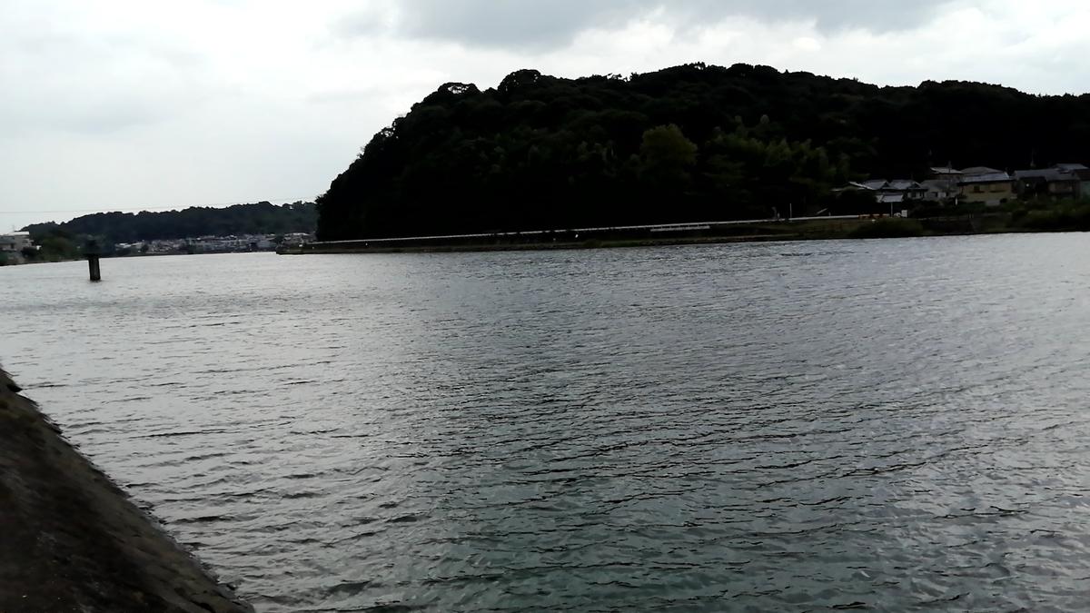 f:id:otomo_hosohito:20210728184654j:plain