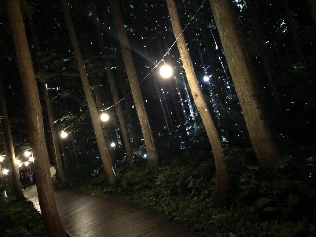 フジロック 夜のボードウォーク