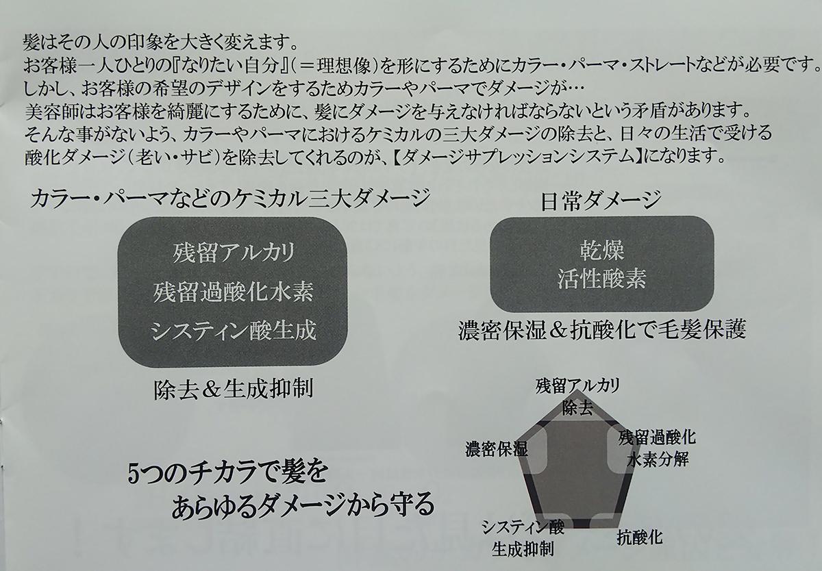 ダメージサプレッションシステム