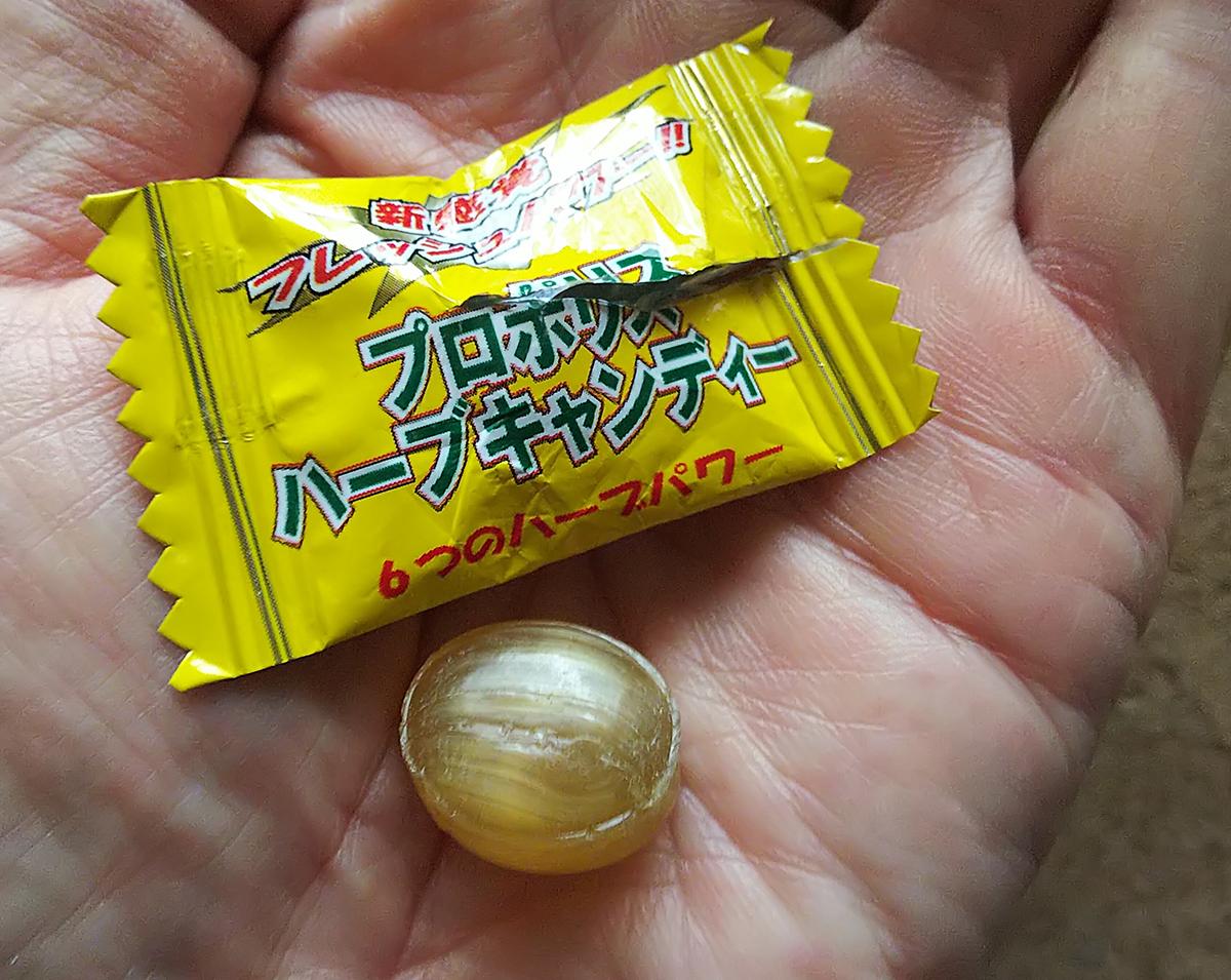 プロポリス・ハーブキャンディーの粒