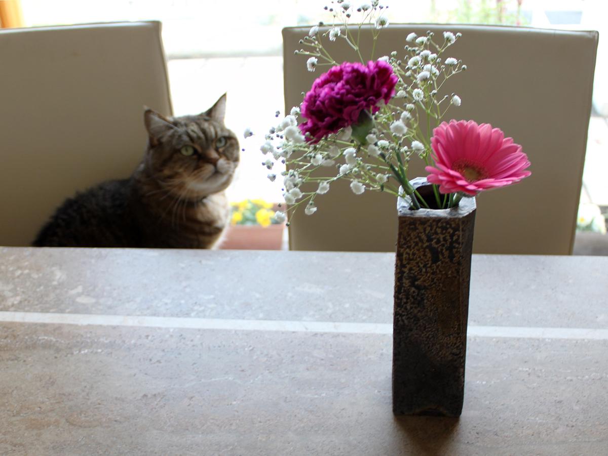 備前焼の花瓶に生けたところ