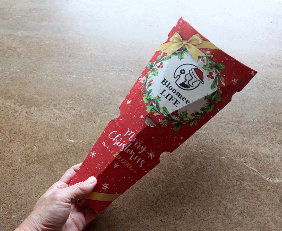 クリスマス使用のパッケージ