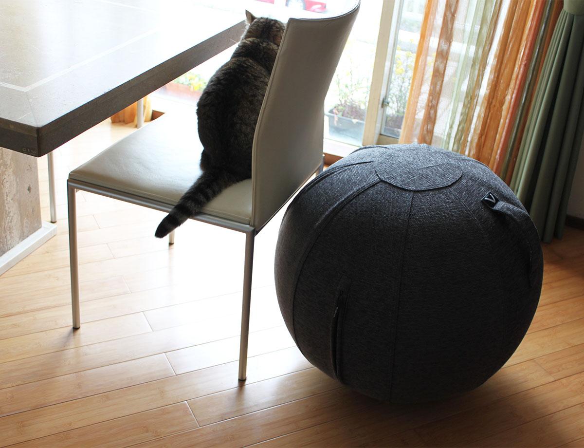 椅子と同じぐらいの高さ