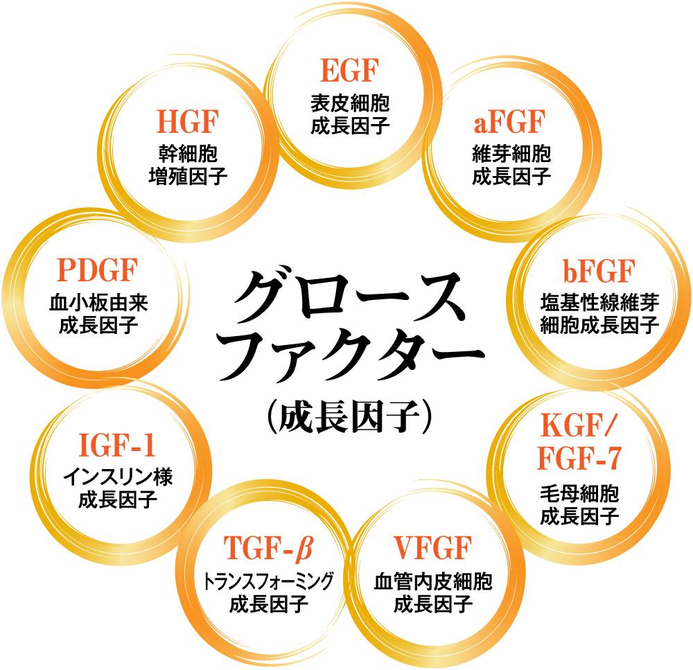 9種類のグロスファクター