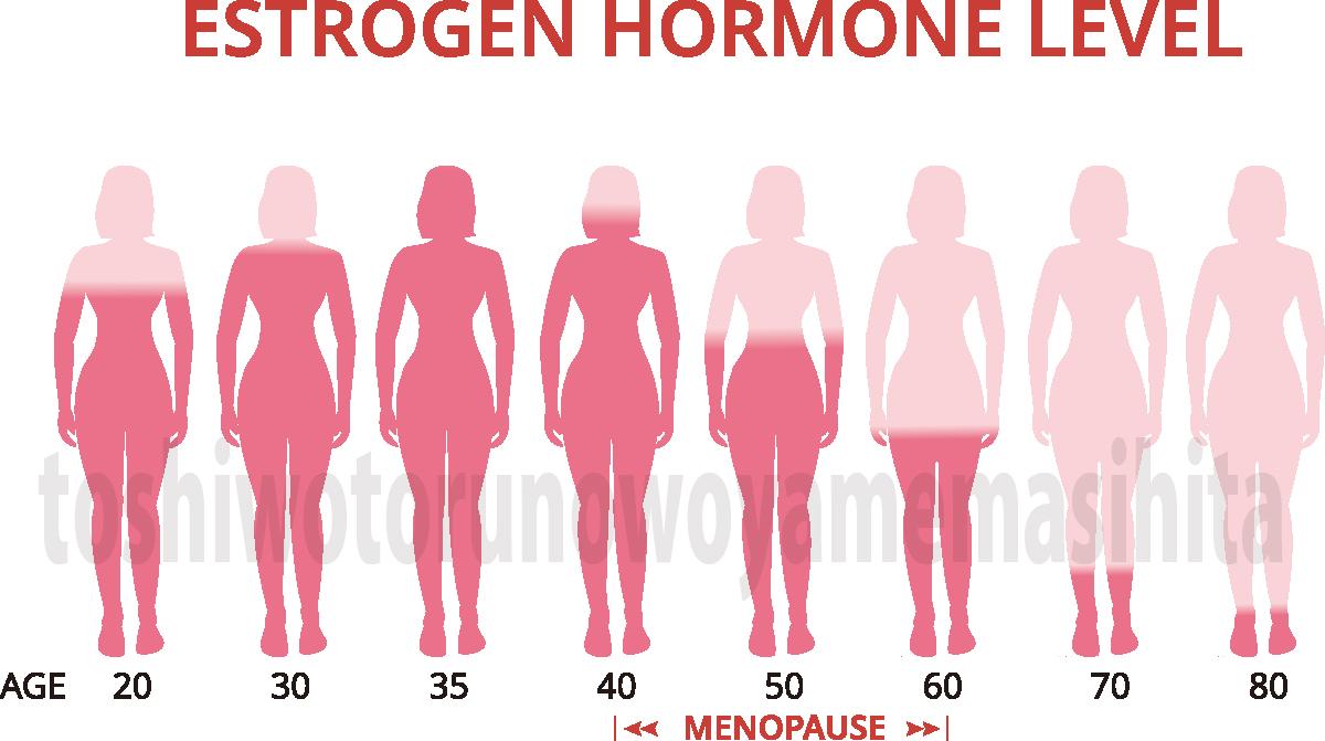 エストロゲンの減少