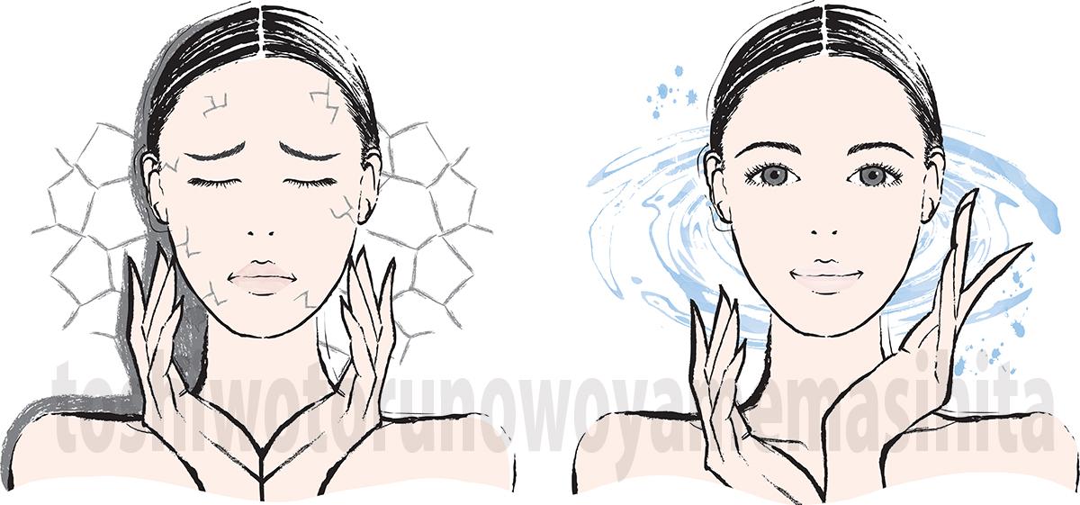 肌の水分量