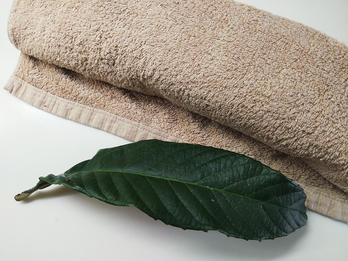 タオルに巻いたコンニャクと枇杷の生葉
