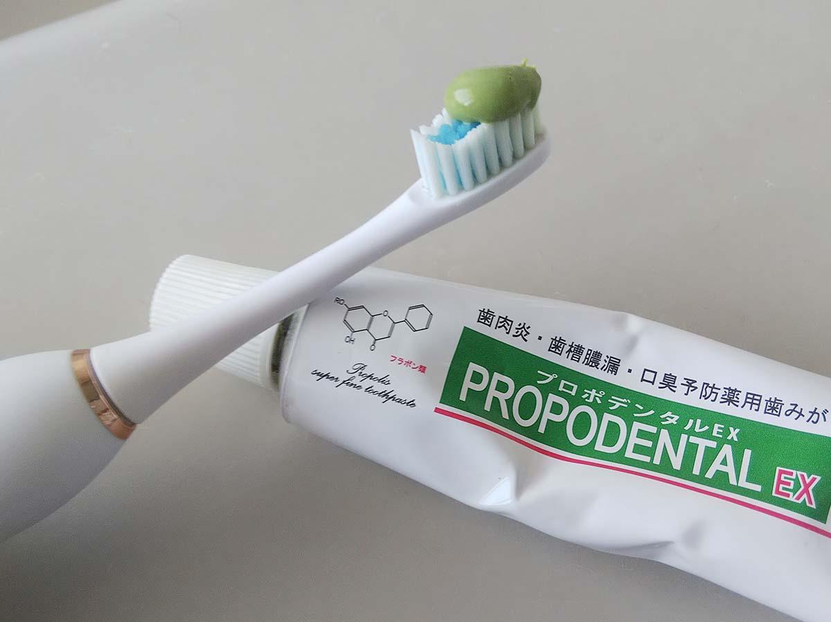 プロポデンタルEX
