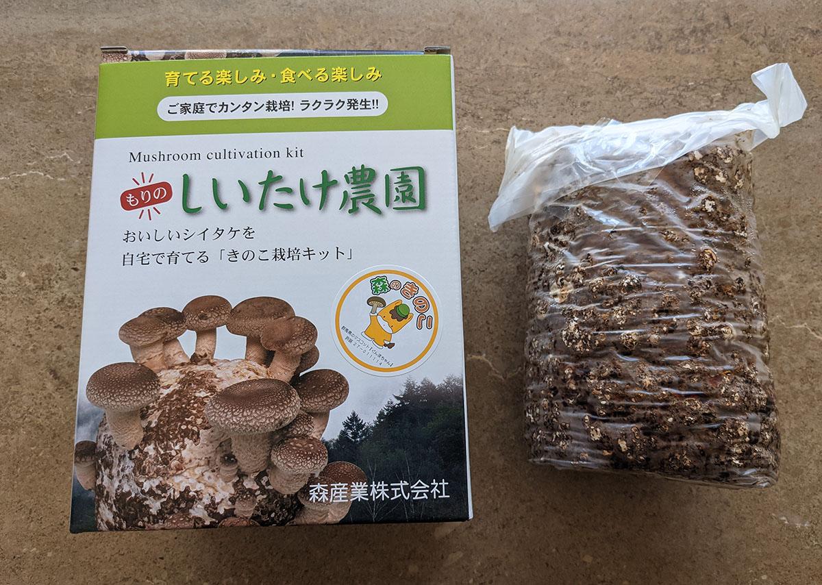 シイタケ栽培キット