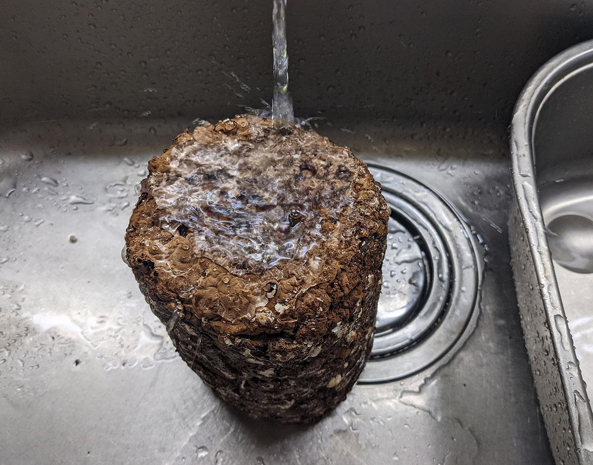 栽培ブロックを水洗い